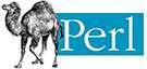 ZWAANZ   Website Dev Technologies: Perl