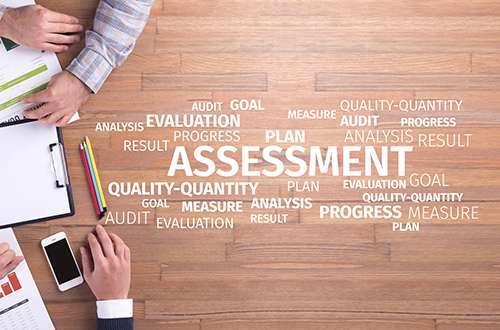 ZWAANZ | Business Assessment