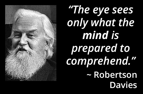 """ZWAANZ 