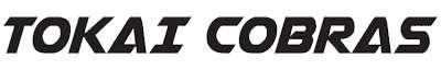 ZWAANZ | Client: Tokai Cobras Soccer