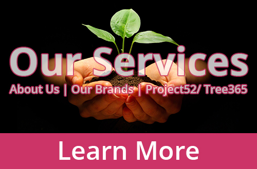 ZWAANZ | Our Services: Click to Learn More