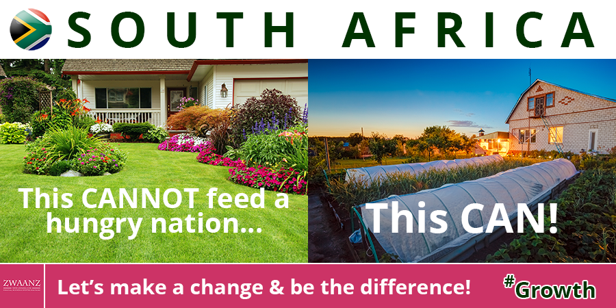 ZWAANZ | Better Living: South Africa - Feed a Hungry Nation